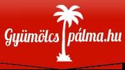 gyumolcspalma-es-csokolade-szokokut logo