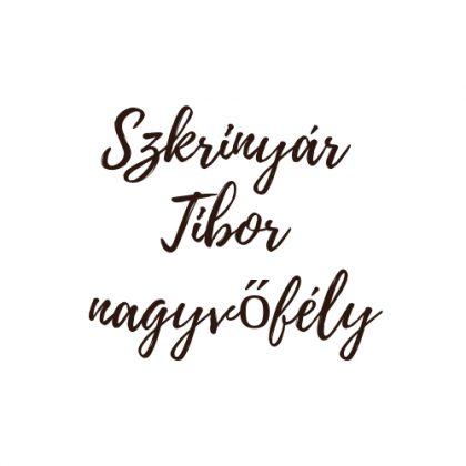 szkrinyar-tibor-nagyvofely logo