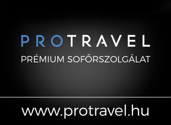 professional-company-kft logo